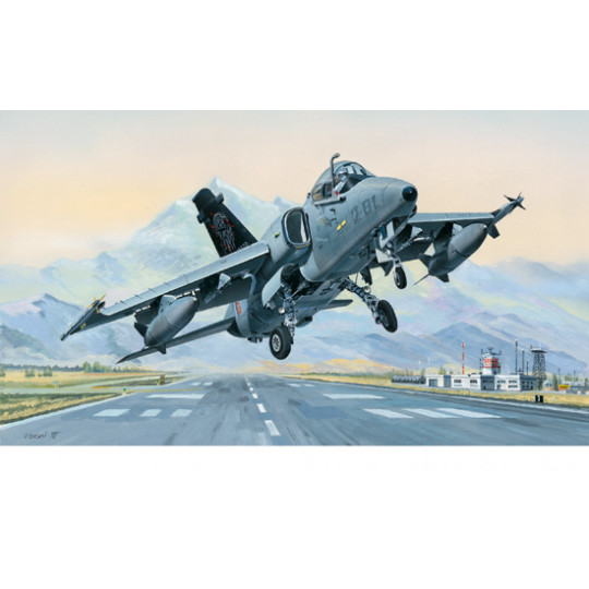 AMX Ground Attack a. 1/48...