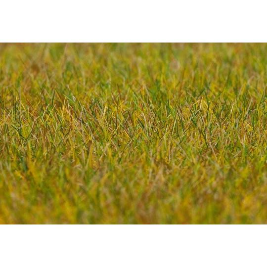 Flocage fibres Premium pré hautes vert clair d'été 30g FALLER