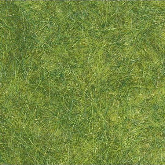 Flocage herbes 15g BUSCH